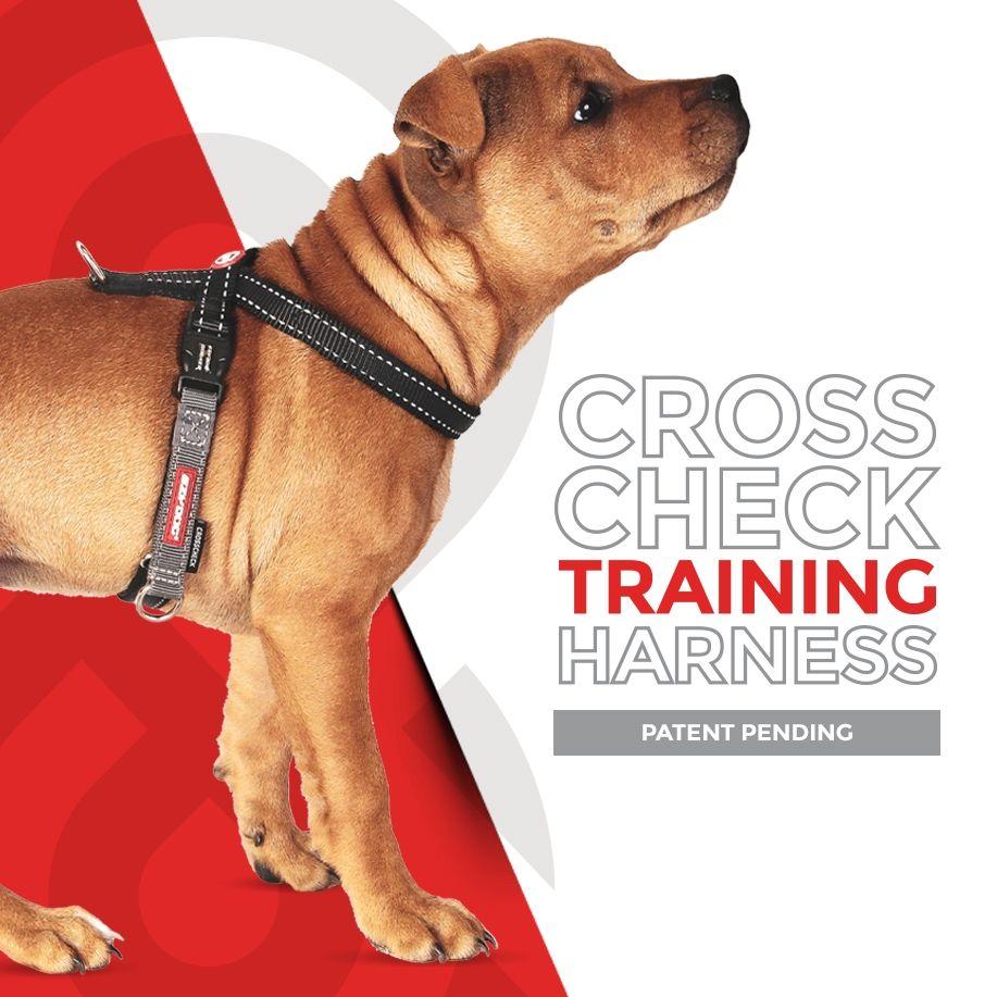Harnais de dressage Crosscheck pour chien