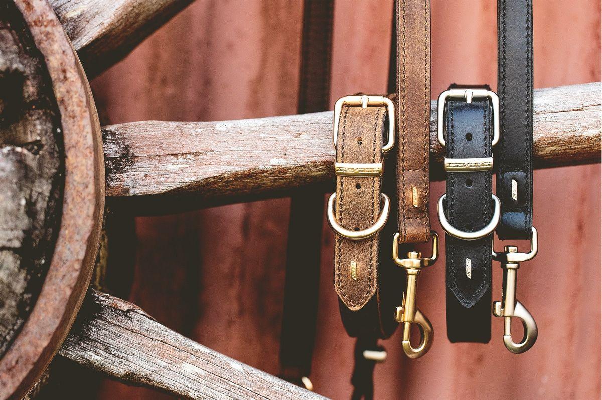 Colliers en cuir pour chien, cuir haut de gamme | EzyDog