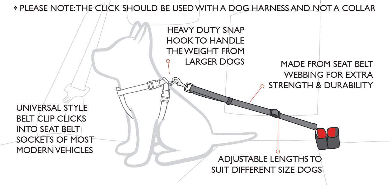 click car restraint diagram