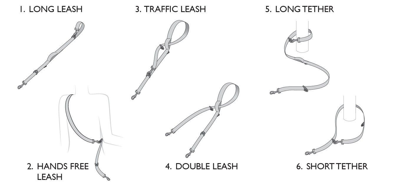 Vario 6 Leash Features